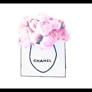 Authentic Chanel Paper Shopping Gift Sack